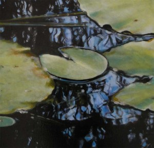 Kakadu Reflection (study), NT
