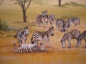 Serengetti Corner