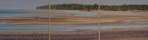 Tidal Flats, Rapid Creek, NT